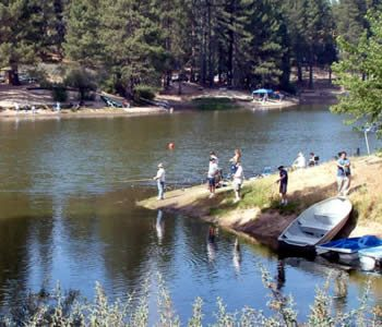Tricia dufour arrowhead pine rose cabins for Green valley lake fishing