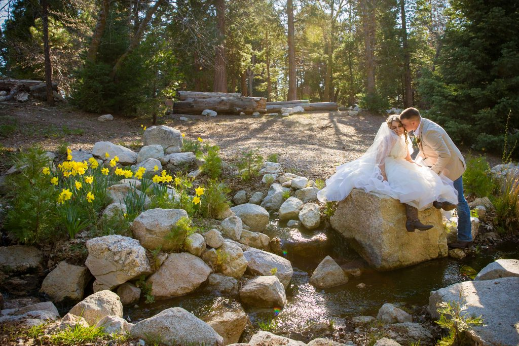 Enchanted Forest Weddings For 30 To 40