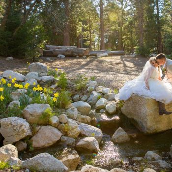 Southern California forest wedding venue