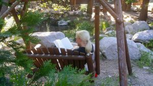 reading book by Pine Rose stream